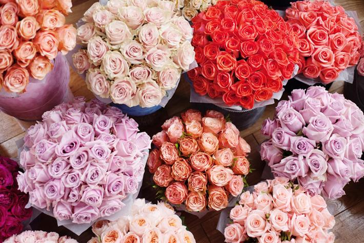Как выбрать свежие розы?